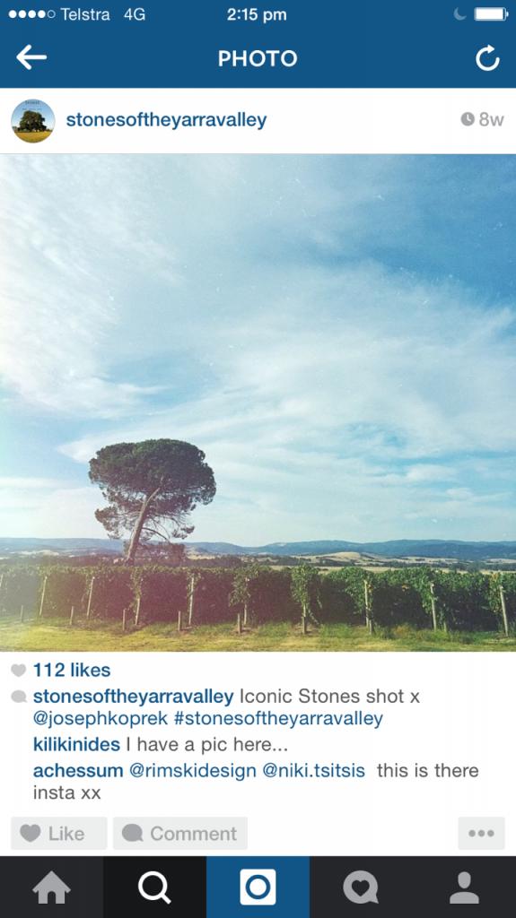 Stones of the Yarra Valley vineyard instagram for restaurants